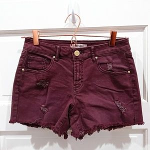 Refuge Maroon Shorts